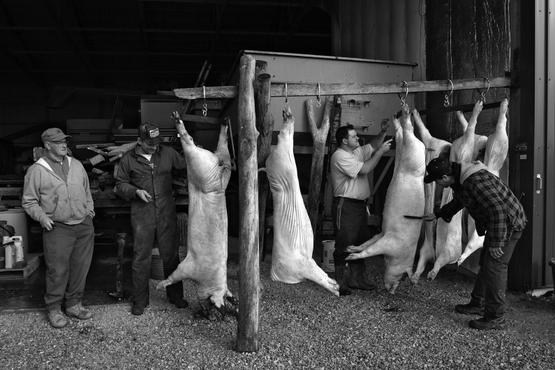 The Jochem family of St. Henry have been butching hogs for more than 100 years.